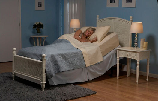 Economy Model Electric Bed